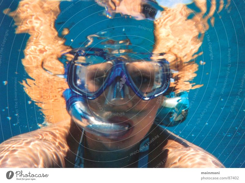 Water Ocean Summer Leisure and hobbies Dive Aquatics Egypt Snorkeling Red Sea