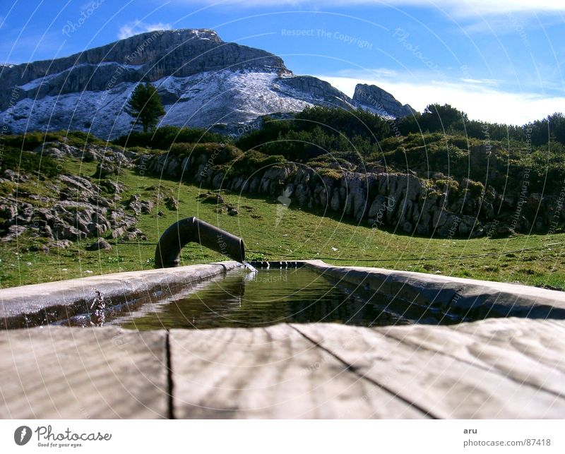 refreshment Trough Federal State of Tyrol Alpine pasture Mountain alpine refreshment Water Nature Level