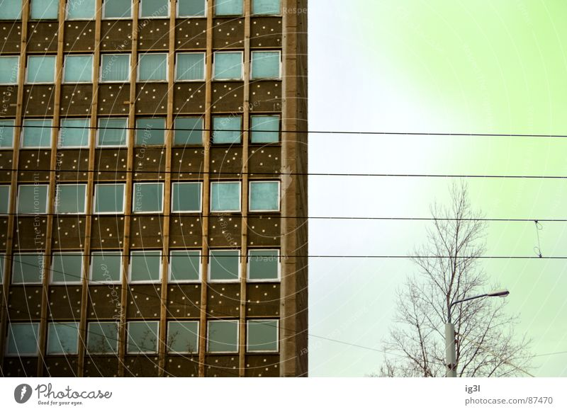 Sky Green House (Residential Structure) Yellow Colour Window Building Flat (apartment) Background picture High-rise Electricity Gloomy Cable Branch