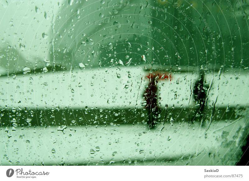 Winter Cold Snow Window Rain Weather Wet Umbrella Seasons Pedestrian