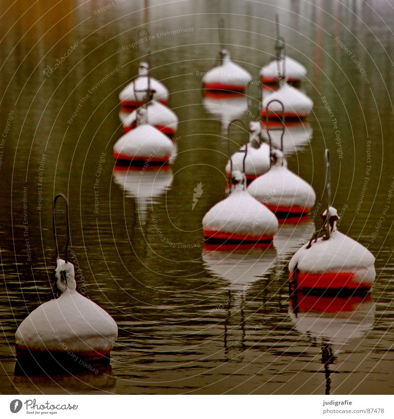 Buoys and snow Lake Multiple Alpina snowcap Ocean Red Navigation mark Calm Harbour Many Snow Water 11 Banal harbour basin. Baltic Sea