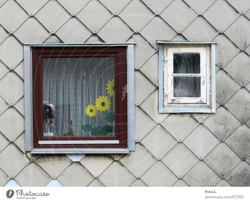 Window to happiness House (Residential Structure) Wall (building) Sunflower Curtain Living or residing Doll Kitsch Old