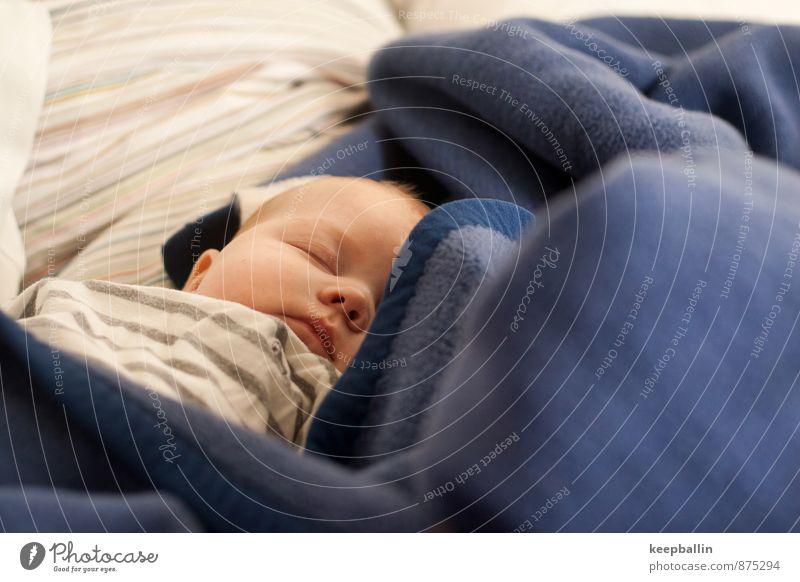 Human being Blue Feminine Head Lie Dream Body Baby Sleep Safety 0 - 12 months