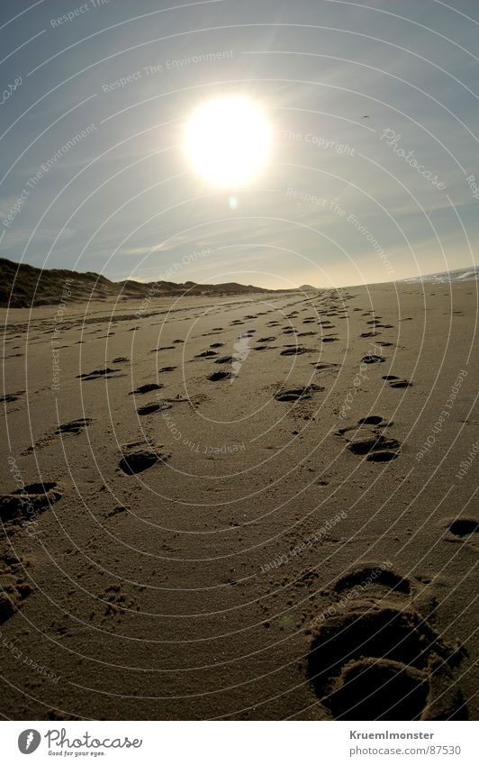 Sky Sun Winter Beach Clouds Sand Coast Footprint Tracks Sylt