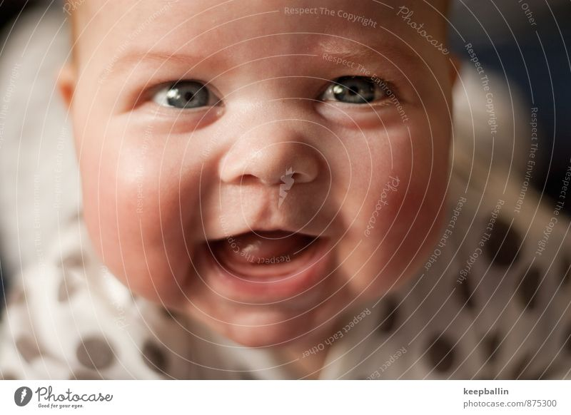 Human being Joy Face Feminine Happy Laughter Head Infancy Happiness Smiling Baby 0 - 12 months Crawl Sympathy