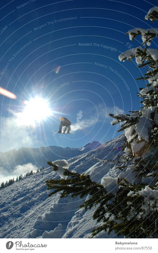 leap to freedom Winter sun Fir tree Powder snow White Snow Freedom Snowboarder Snowboarding Freestyle Sunbeam Back-light Posture Tall far Brave Deep snow Slope