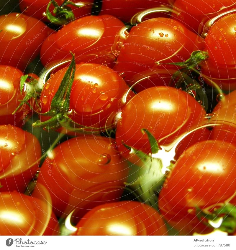 tomatoes Tomato salad Tomato juice Solanaceae Vitamin A Red Green Lust Healthy Eating Nutrition Gastronomy Ketchup Ingredients Vitamin C Sense of taste