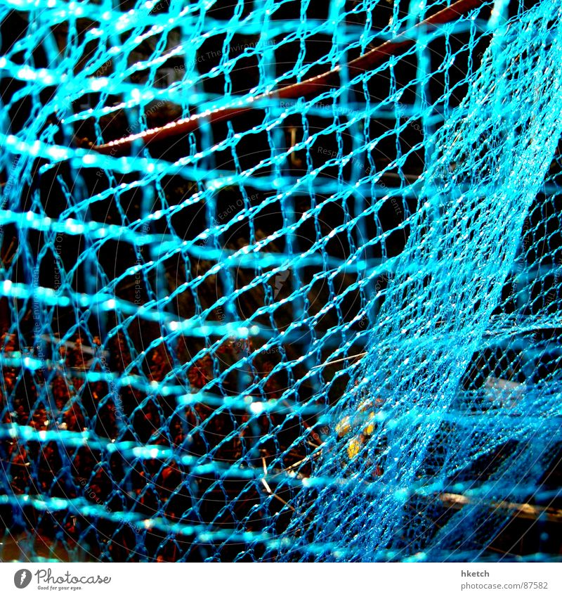 Closed Net Obscure Neon light Muddled Interlaced Spider's web Cobwebby Complicated Shielded Entangle