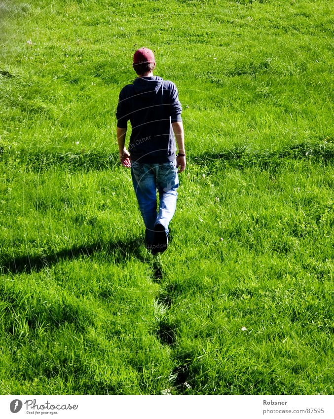 Green Red Colour Landscape Meadow Freedom Lanes & trails Grass Germany Going Walking Wet Tall Grief Soft Lawn