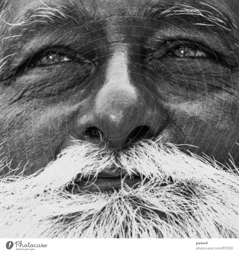 Human being Old Eyes Facial hair Black & white photo Foreign Wisdom Indulgent Refugee