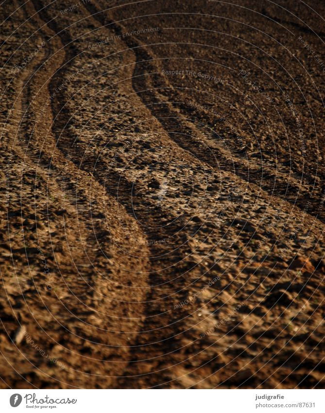 Meadow Sand Earth Line Brown Field Growth Floor covering Agriculture Footprint Contract Plow Extend Tractor track