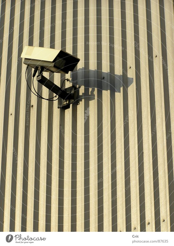 big brother Lake Illegal Safety camera Police state alone watch eye robot Wall (barrier)