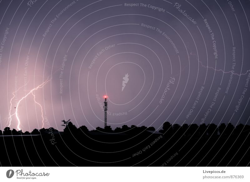 ...thunderstorms again Environment Nature Landscape Air Sky Clouds Storm clouds Night sky Summer Thunder and lightning Lightning Plant Tree Field Forest