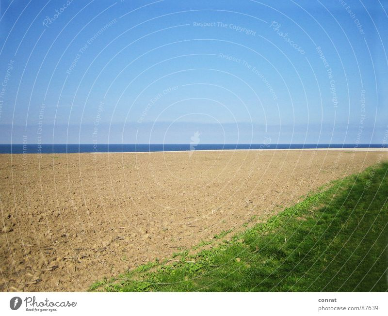 Sky Ocean Summer Beach Far-off places Meadow Field Coast Horizon Baltic Sea