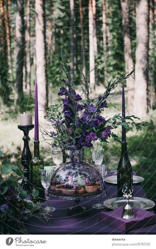 forest fairy tale Food Cake Lunch Beverage Alcoholic drinks Champagne Lifestyle Elegant Style Design Exotic Joy Leisure and hobbies Entertainment Event