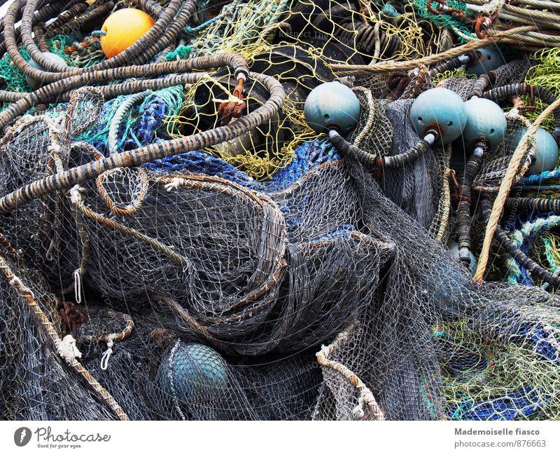 havoc Fishing (Angle) Rope Net Blue Yellow Gray Green Fischeln Fishing net Colour photo Exterior shot