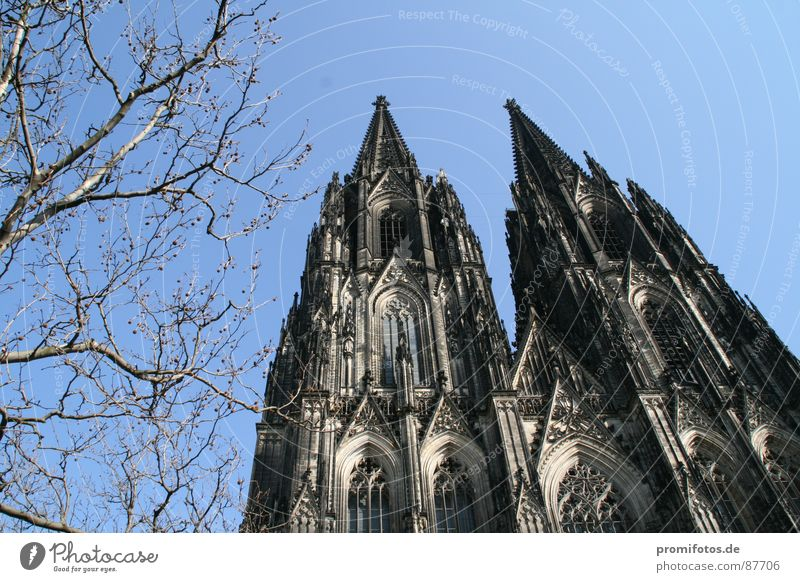 Cologne Cathedral on a sunny spring day. Photo: Alexander Hauk Tourism Art Dome Tourist Attraction Might Goodness Dedication Purity Envy Betray