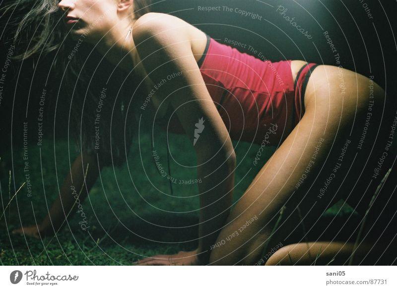 Woman Fear Underwear Crawl Panic Awareness Criminality Human being