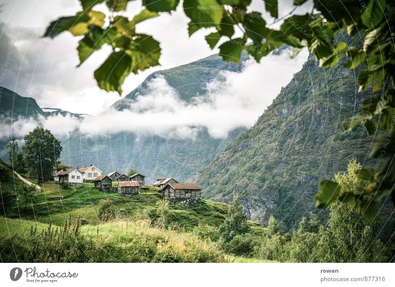 mountain village Clouds Tree Mountain Village House (Residential Structure) Hut Beautiful Mountain village Idyll Norway Height Country life Old Colour photo