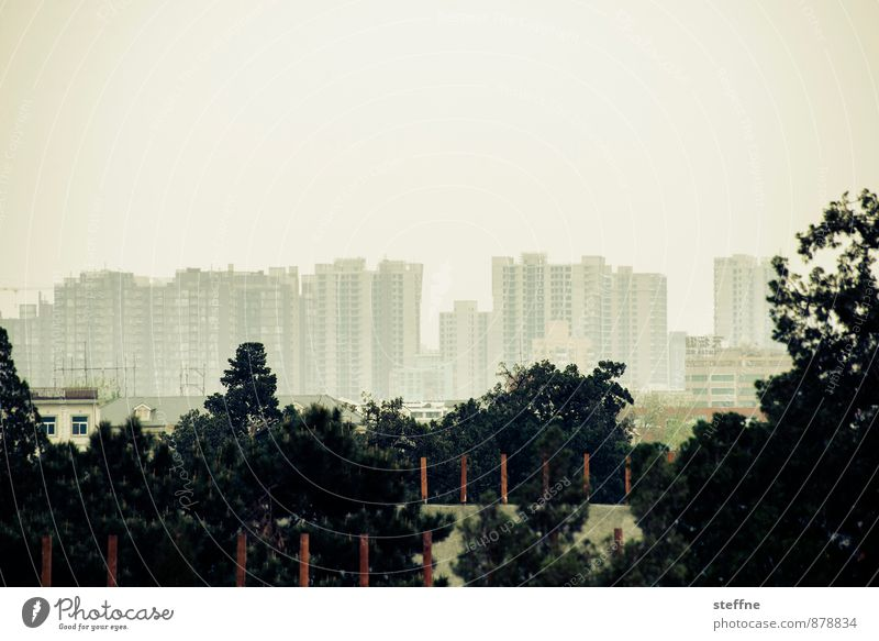 natural Beijing Landscape Tree China Skyline Overpopulated House (Residential Structure) Town Smog Contrast Exterior shot Copy Space top Panorama (View)
