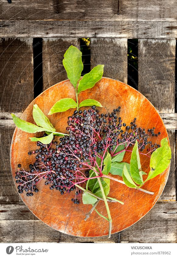 Elder branch with leaves and berries Nutrition Organic produce Lifestyle Garden Nature Plant Summer Autumn Elderberry Twig Berries Old Wood Chopping board Table