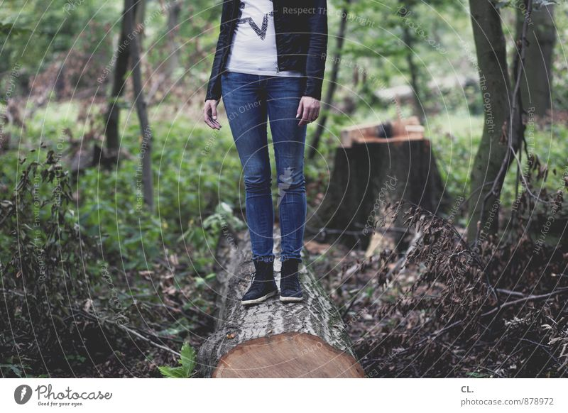 blunt is trumpf Human being Feminine Young woman Youth (Young adults) Woman Adults Life 1 18 - 30 years Environment Nature Landscape Tree Forest Fashion T-shirt