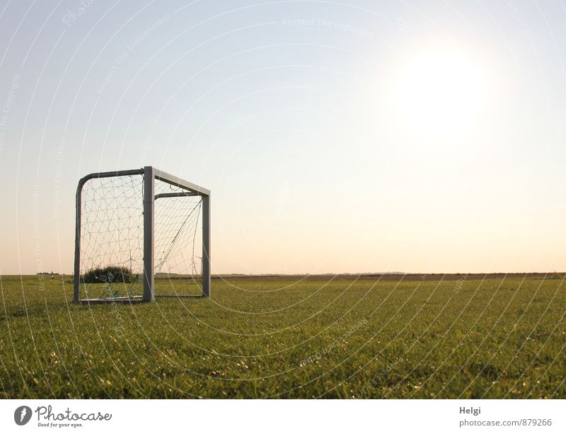 Nix los... Sports Ball sports Foot ball Football pitch Soccer Goal Environment Nature Landscape Plant Sky Sunlight Summer Beautiful weather Grass Foliage plant