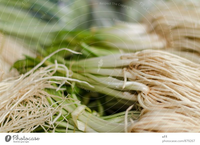 Thai vegetables Food Vegetable Asian Food Exotic Fresh Healthy Good Delicious Natural Juicy Green White Onion Leek vegetable Root vegetable Vitamin Ingredients