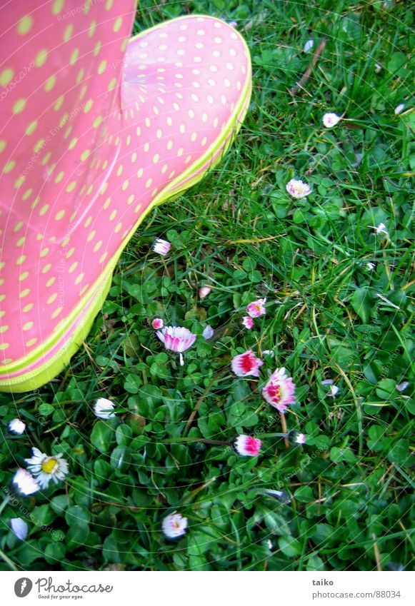 Rosa's gumboots I Pink Dappled Rubber boots Footwear Boots Grass Flower Daisy Yellow Green Pattern Spring Jump Juicy Clothing patterned daisys wellies shoes