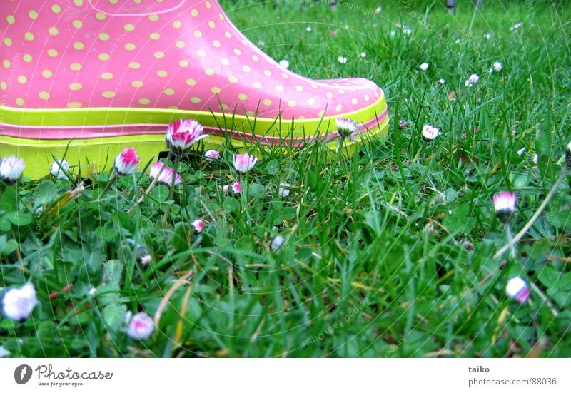 Rosa's gumboots II Pink Rubber boots Footwear Boots Grass Flower Daisy Yellow Green Pattern Dappled Spring Jump Juicy Clothing wellies shoes Lawn flowers daisys