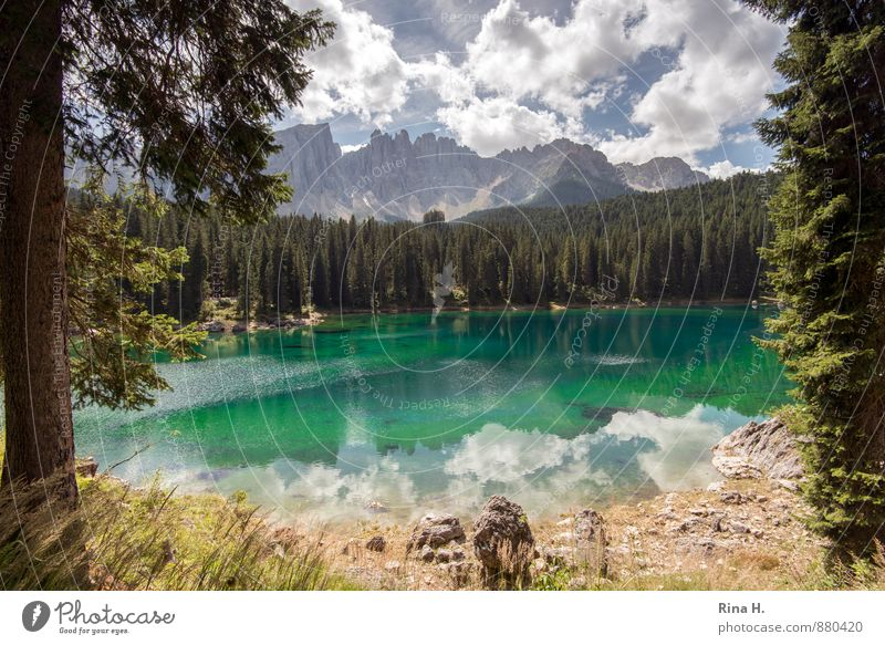 Karersee Environment Nature Landscape Sky Clouds Summer Forest Mountain Lake Vacation & Travel Calm Dolomites karersee South Tyrol Colour photo Exterior shot