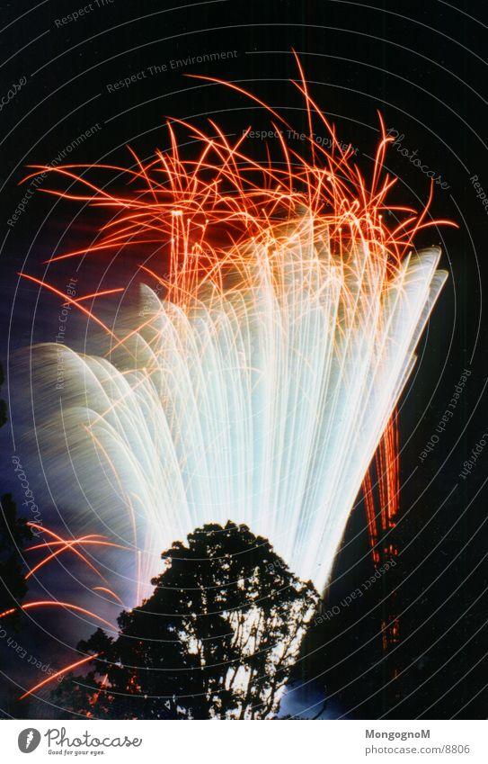 Fireworks4 Night Multicoloured Red Tree Long exposure Firecracker Bright Spark