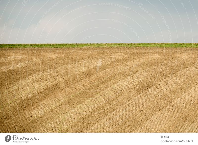 Well combed is half brushed Agriculture Forestry Environment Nature Landscape Earth Sky Field Line Stripe Tracks Plowed Natural Blue Brown Horizon Precision