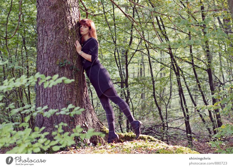my friend, the tree. Agriculture Forestry Feminine Young woman Youth (Young adults) 1 Human being 30 - 45 years Adults Nature Tree Moss Dress Tights