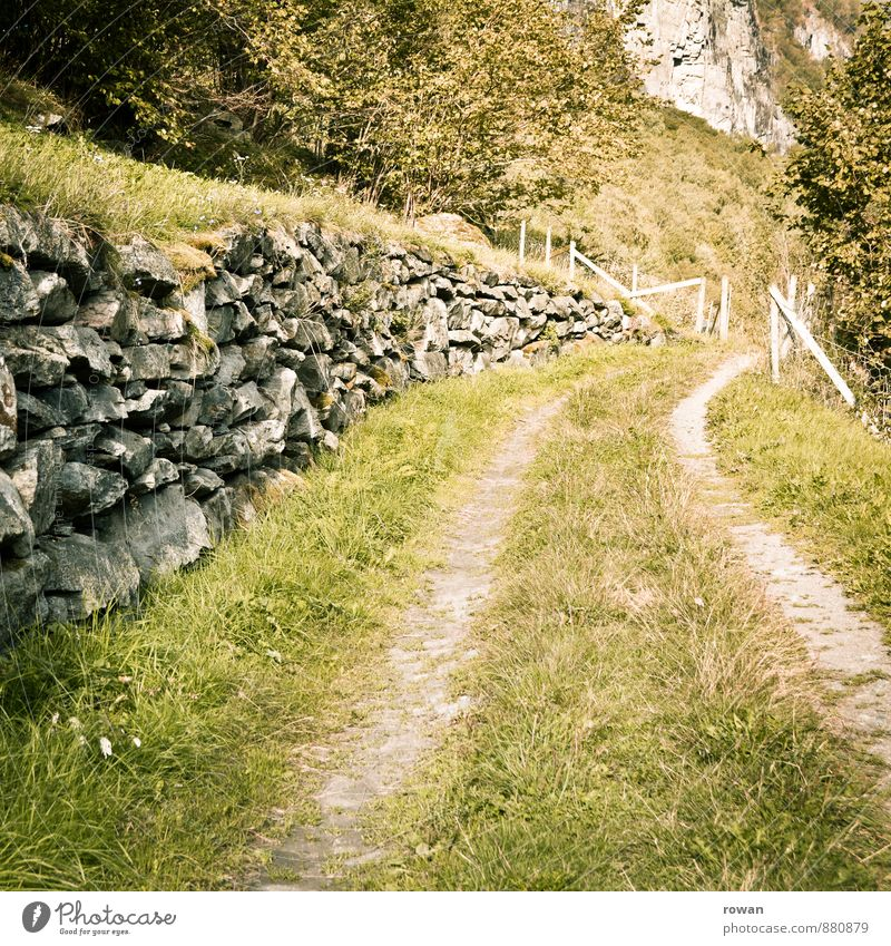 dirt road Nature Landscape Park Meadow Field Pedestrian Lanes & trails Calm Relaxation Footpath Stone wall Country life Colour photo Exterior shot Deserted