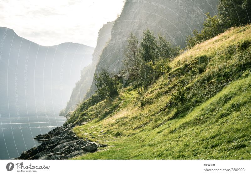 fjord Beautiful weather Bushes Rock Mountain Coast Lakeside Bay Fjord Green Norway Vacation in Norway Relaxation Nature Haze Hiking Meadow Colour photo