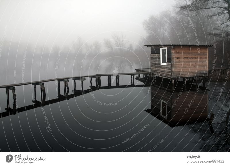 silent Harmonious Relaxation Calm Meditation Fishing (Angle) Autumn Bad weather Fog Lakeside Hut Footbridge Brown Black White Sadness Grief Loneliness