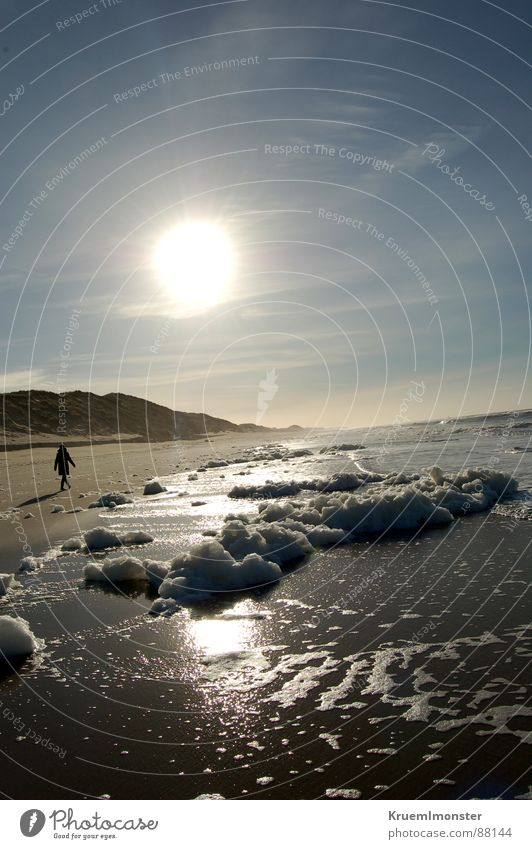 A winter day Sylt Beach Ocean Earth Sand Human being empty Sun sunshine sea