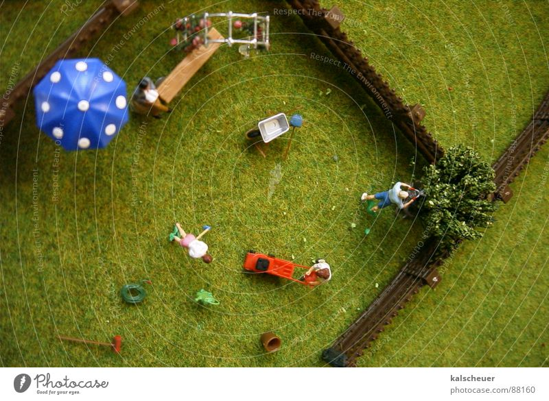 Allotment garden2 Grass Garden fence Leisure and hobbies Sunshade Lawnmower Synthetic Doll Pattern Placed artificial