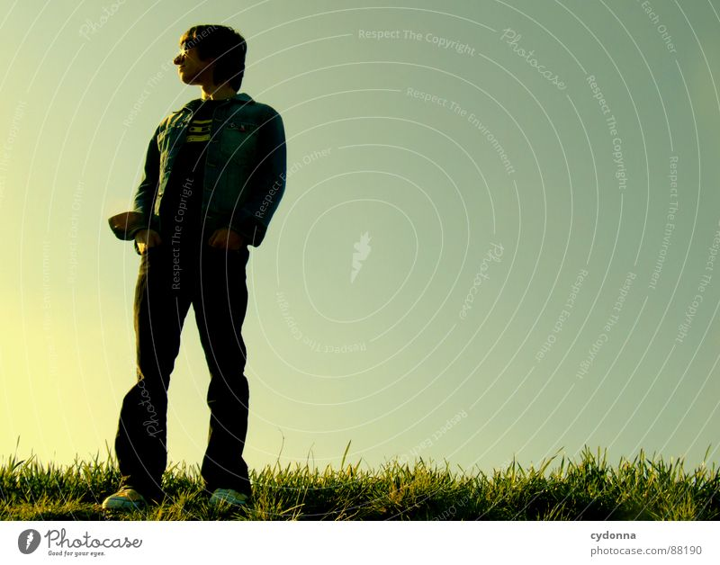 Standing there Illuminate Meadow Grass Green Style Sunset Posture Blade of grass Sunglasses Sunlight Think Man Fellow Worm's-eye view Emotions Human being Sky