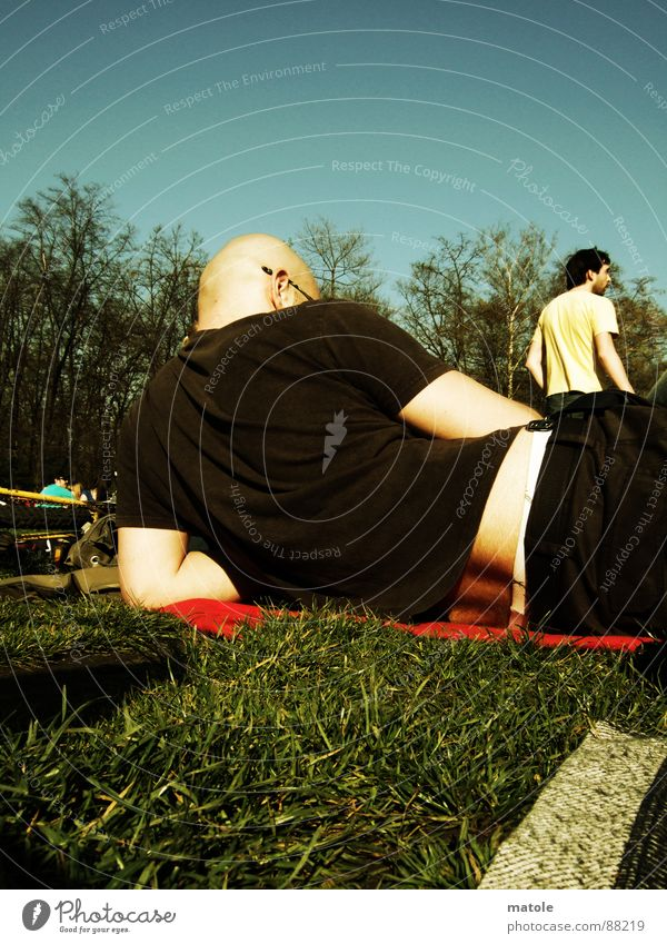 Sun Summer Relaxation Meadow Freedom Grass Garden Air Friendship Park Leisure and hobbies Break Observe Remote Spring fever Switch off