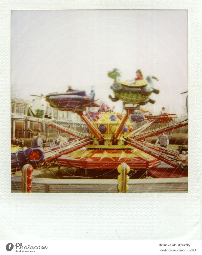 Fasten your seat belt, please. Fairs & Carnivals Carousel Rotate Animal Toys Leisure and hobbies Circle Playing Polaroid Flying Sky Infancy