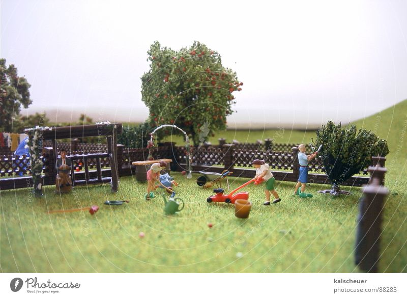 Green Garden Park Fog Lawn Fence Placed Weekend Lawnmower