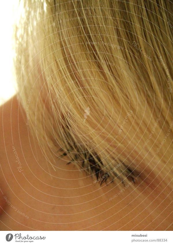 blondi Woman Blonde Strand of hair Face Eyes Hair and hairstyles