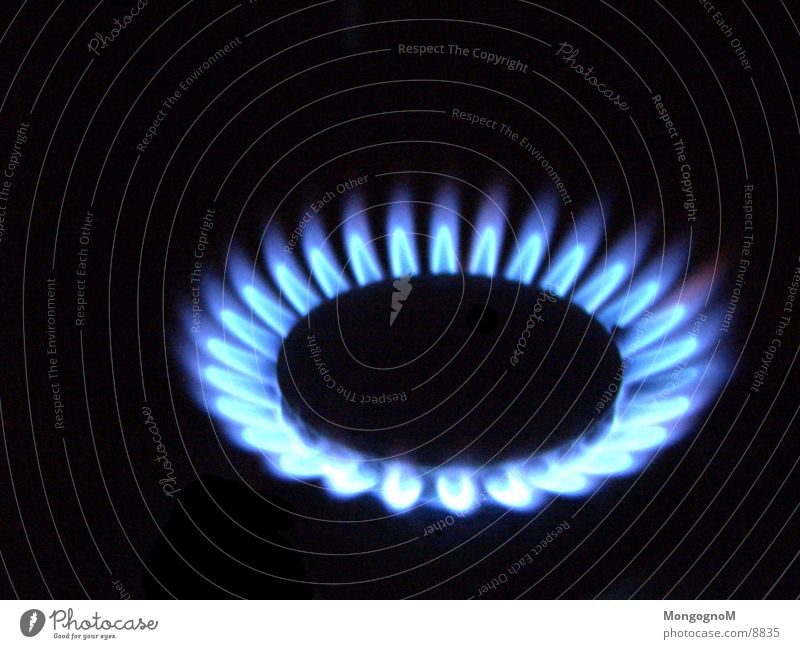 gas flame Stove & Oven Gas flame Physics Electrical equipment Technology Flame blue flame Warmth Macro (Extreme close-up)