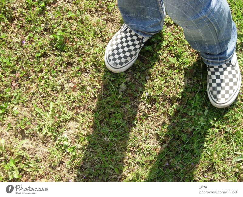 shadow plays Delivery truck Grass Footwear Checkered Green Brown Meadow Leisure and hobbies Playing Autumn Feet Shadow Jeans Earth Floor covering Dirty Legs