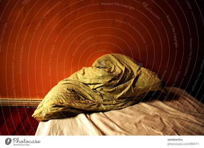 Dream Sleep Grief Bed Distress Cushion Sheet Bedroom Nightmare Furniture Doze Insomnia Pillow Don't count your chickens