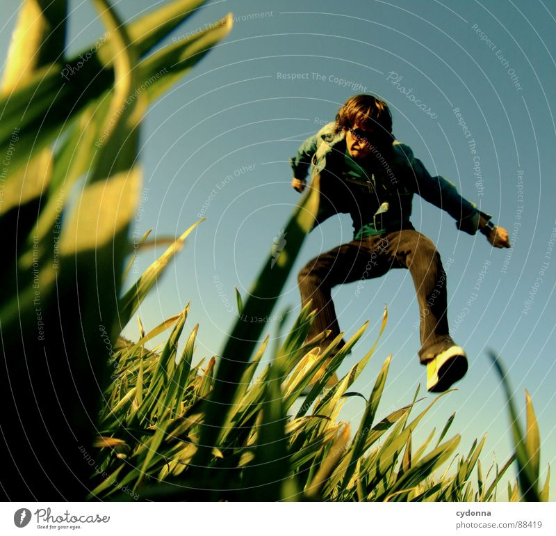 Jump into the field! Hop Spring Meadow Grass Green Style Sunset Posture Blade of grass Worm's-eye view Sunbeam Kick Martial arts Man Fellow Field Emotions