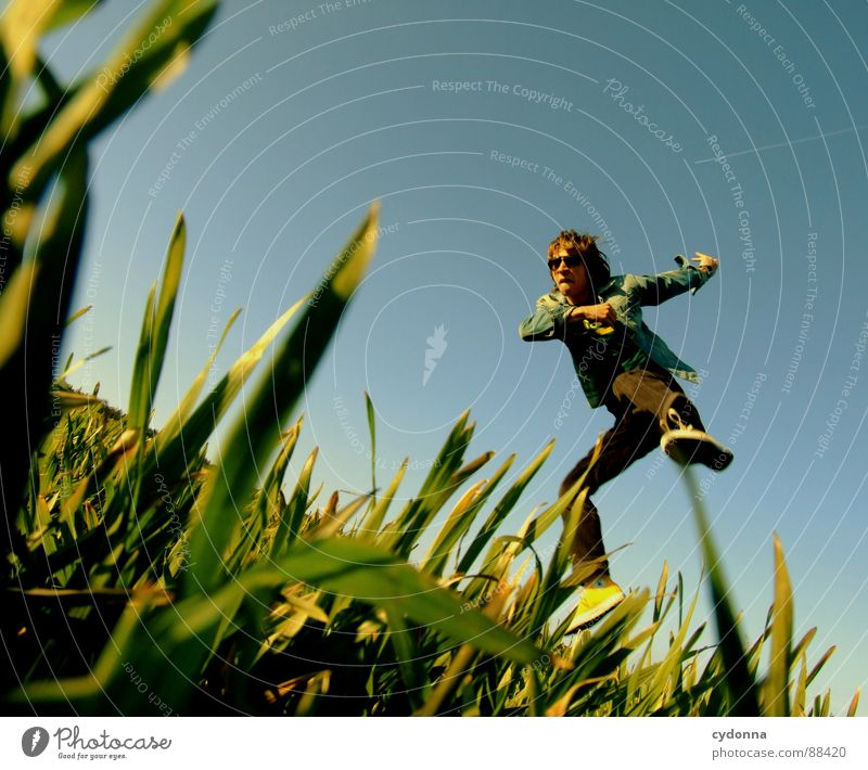 Jump into the field! I Hop Spring Meadow Grass Green Style Sunset Posture Blade of grass Worm's-eye view Sunbeam Kick Martial arts Man Fellow Field Emotions
