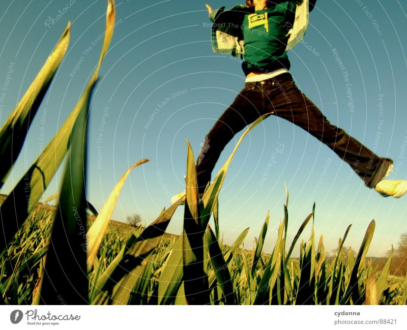 Jump into the field! SECOND Hop Spring Meadow Grass Green Style Sunset Posture Blade of grass Worm's-eye view Sunbeam Kick Martial arts Man Fellow Field